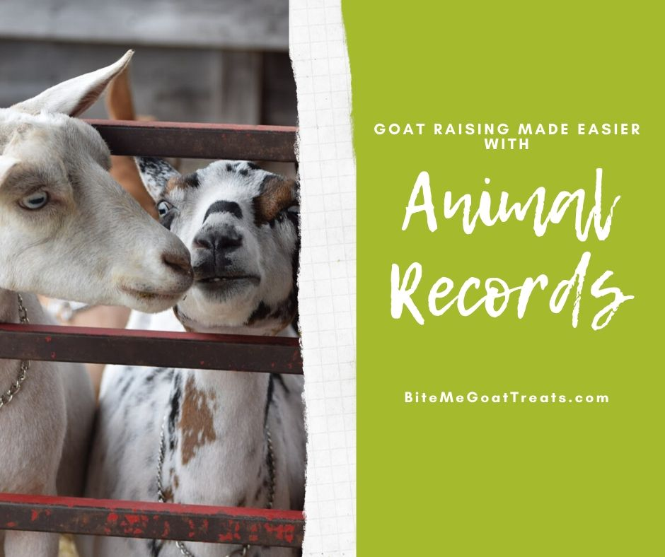 Tracking hoof trims, deworming, milking, breeding and more can get overwhelming. Did you know that keeping animal records written down in one place can make it all so much easier?